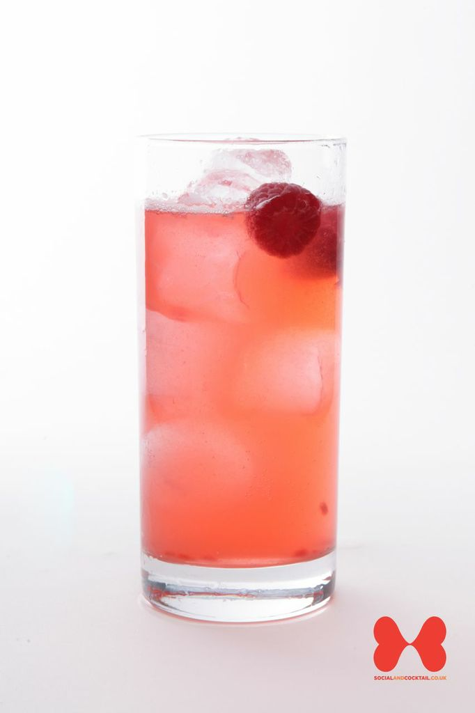 Raspberry Collins Cocktail Recipes Gin Cocktails