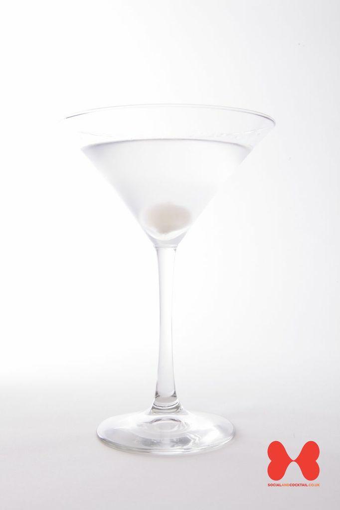 recipe: gibson vs martini [27]