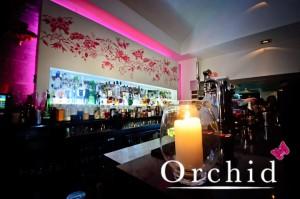 Orchid Aberdeen