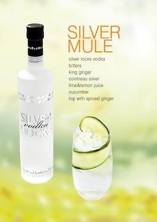 """Silver Rocks"" Vodka Competition   Social & Cocktail Blog"
